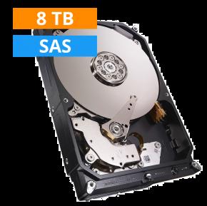 8TB Western Digital UltraStar 0B36399 HC320 3.5 inch SAS 4Kn NIEUW